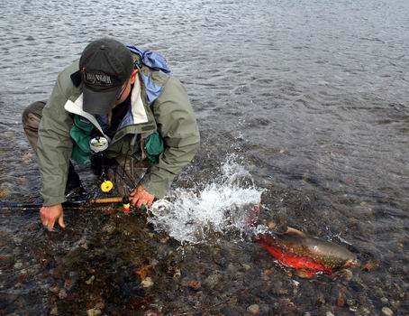 Red char fishing in arctic quebec canada rapid lake for Fishing in quebec